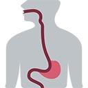 La physiologie de la perte de poids