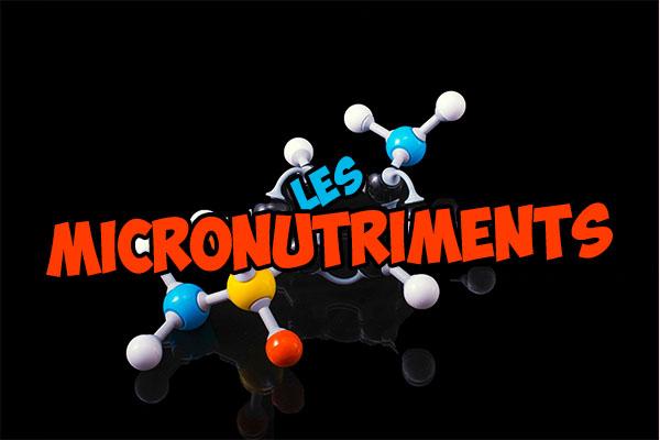 les micronutriments dans notre alimentation